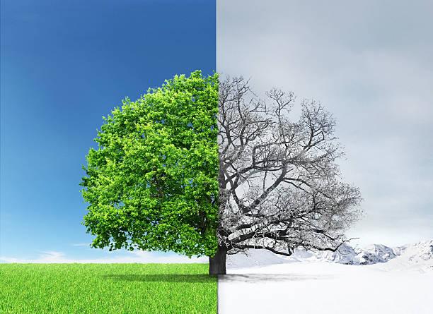 夏から冬へ季節の変わり目で体調を崩していませんか?